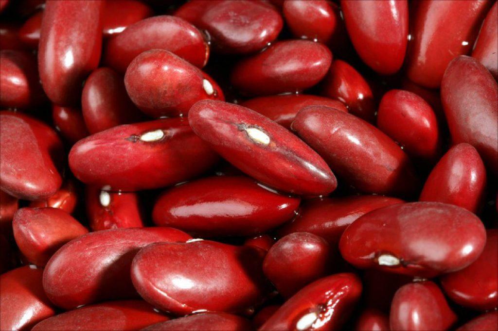 Kích thước phôi thai 8 tuần tuổi như một hạt đậu đỏ